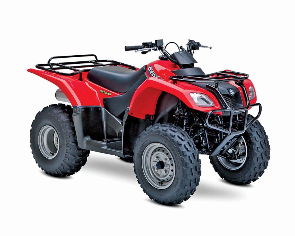 2WDBG7_Suzuki-Ozark-250